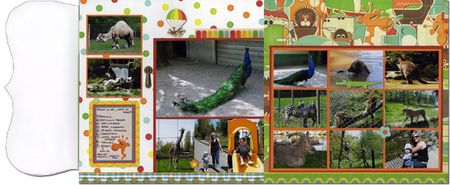 Kerry-zoo-b