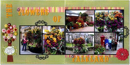 Flowers of Falkland