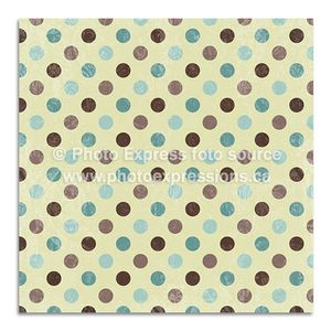 Preview-PE017---12x12-Brown-Teal-Dot