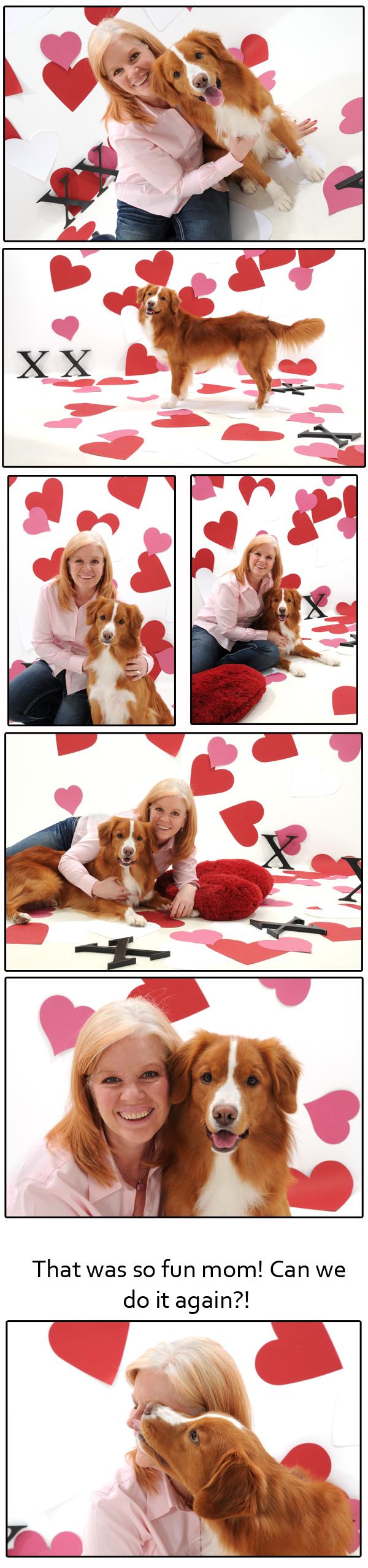 Studio Pet Photography Maple Ridge